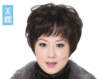 短发新娘怎么盘头_老年人烫短发的发型有哪些 中老年满头烫发型图片(4)_发型师姐